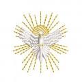 DIVINE HOLY SP...