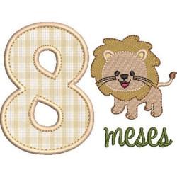 MESVERSÁRIO 8 MESES MENINO