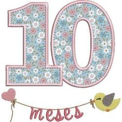 MESVERSÁRIO 10 MESES MENINA