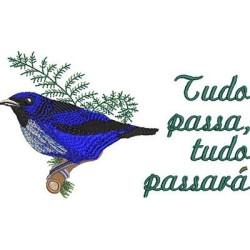 TODO PASA