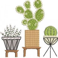 TRIO OF VESSELS WITH CACTUS 1