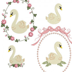 PAQUETE SWAN 1