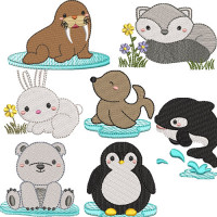 PACKAGE 7 ANIMALS OF THE ARCTIC