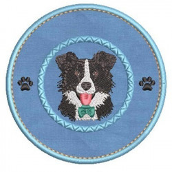 AMO MI BORDER COLLIE 3