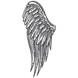 ANGEL WING 1