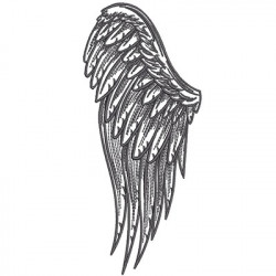 ANGEL WING 2