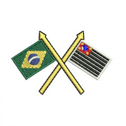 FLAG SAO PAULO AND BRAZIL 2
