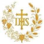 TRIGOS Y UVAS COLECCIÓN 1