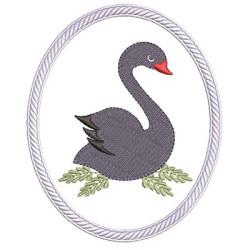 SWAN FRAME 6