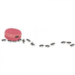 MACARONS LOAD ANTS