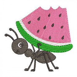 WATERMELON LOAD ANT