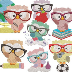 OWL GLASSES PACKAGE