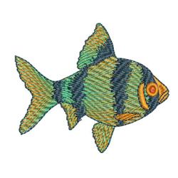 FISH 7 CM May 2015