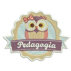 SHIELD PEDAGOGY 2