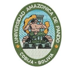 UNIVERSIDAD DE AMAZON PANDO UNIVERSIDAD BRASIL