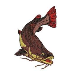 PIRARARA ANIMAL