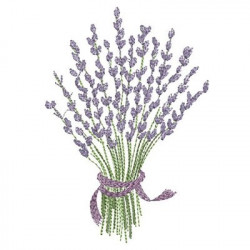 LAVENDER GREATER January 2015