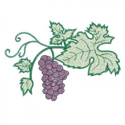 BUNCH OF GRAPES BRANCH