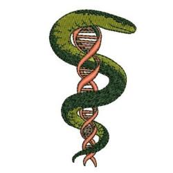 MEDICINE DNA AREA MEDICINE